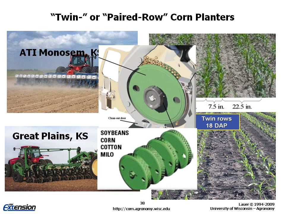 summary of the corn planting short story Read this essay on king corn summary and john mr lynch short story analyzer short story: the corn planting author: sherwood anderson.